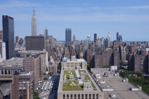 2 Acres Green Roof in Manhattan